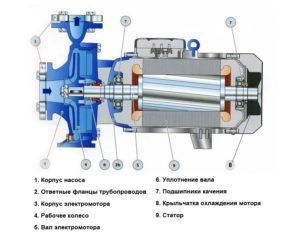 Конструкция центробежного насоса