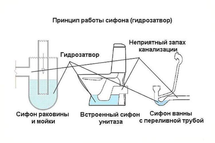 Наглядный принцип работы сифона
